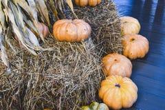 Muchas calabazas y parte posterior brillante de los productos del otoño de la decoración del heno Fotos de archivo