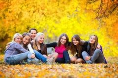 Muchas chicas jóvenes en el parque del otoño Fotos de archivo libres de regalías