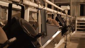 Muchas de viejas luces de teatro en el ático almacen de metraje de vídeo