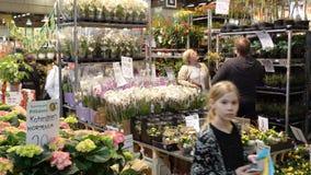Muchas diversas flores y plantas en la estrella hacen compras almacen de metraje de vídeo