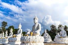 Muchas estatuas blancas de Buda que se sientan en fila en el templo tailandés Imagen de archivo