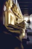 Muchas imágenes de buddha Foto de archivo libre de regalías