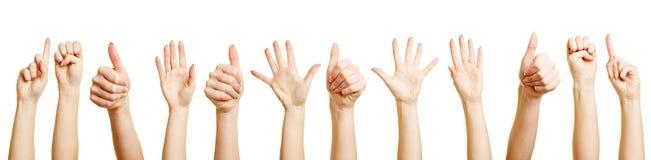 Muchas manos que hacen diversos gestos Foto de archivo libre de regalías