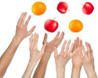 Muchas manos quieren a los catchs las frutas, aisladas en blanco foto de archivo