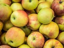 Muchas manzanas en el contador de la tienda Foto de archivo