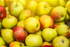 Muchas manzanas en el contador de la tienda Foto de archivo libre de regalías