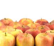 Muchas manzanas sabrosas maduras aisladas cerca para arriba Foto de archivo