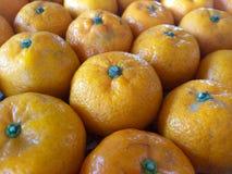 Muchas naranjas Imagen de archivo libre de regalías