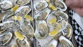 Muchas ostras adornadas con el limón dan fruto en una placa del hielo almacen de metraje de vídeo