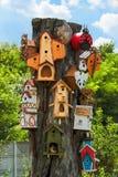 Muchas pajareras en la madera Foto de archivo