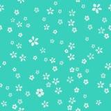 Muchas pequeñas flores blancas con base del oro Fondo de lujo de la turquesa ilustración del vector