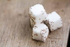 Muchas pequeñas hormigas en el azúcar de cubo imagen de archivo