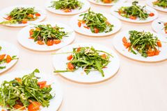Muchas placas con la ensalada fresca con el arugula del pollo, de los tomates, nuts y mezclado de los verdes, mesclun, mache en l Foto de archivo libre de regalías