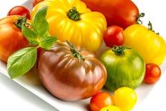 Muchas variedades de tomates coloridos Imagen de archivo