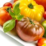 Muchas variedades de tomates coloridos Imagen de archivo libre de regalías
