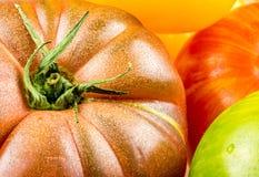 Muchas variedades de tomates coloridos Fotografía de archivo