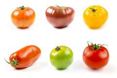 Muchas variedades de tomates coloridos Imagenes de archivo