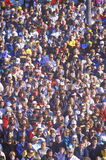 Muchedumbre de gente multicultural en el Rose-Tazón de fuente fotos de archivo