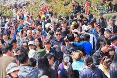 Muchedumbre en el parque de Yuyuantan, Pekín, China Foto de archivo libre de regalías