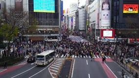 Muchedumbres de gente que camina a través en la calle que cruza famosa de Shibuya en Tokio, Japón metrajes