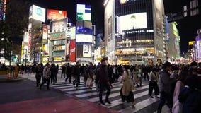 Muchedumbres de gente que camina a través en la calle que cruza famosa de Shibuya en Tokio en la noche, Japón almacen de video