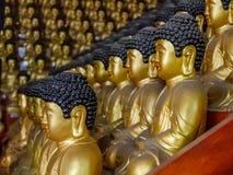 Mucho Buddah Fotos de archivo libres de regalías