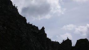 Mucho cabra montés joven o situación alpina de la cabra de montaña en silueta en un canto dentado de la montaña fotos de archivo libres de regalías