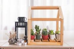 Mucho el cactus verde en pote plástico adorna en modelo de madera de la casa Imagen de archivo libre de regalías