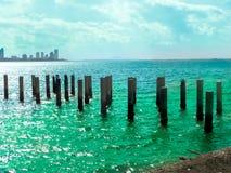 Mucho el soporte de la gaviota en pilar del abandono y el mar bicolor emergen Foto de archivo libre de regalías