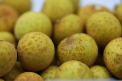 Mucho fruta fresca del Longan Fotos de archivo