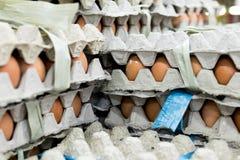 Mucho huevo en la pantalla para la venta en el mercado local de la comida fresca, isla tropical de Bali, Indonesia Foto de archivo