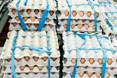 Mucho huevo en la pantalla para la venta en el mercado local de la comida fresca, isla tropical de Bali, Indonesia Fotografía de archivo libre de regalías