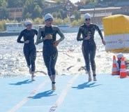 Mucho nadador de sexo femenino que sube para arriba del agua Fotos de archivo libres de regalías