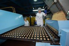 Mucho producción masiva de la torta de la fábrica dulce de la comida Imagen de archivo