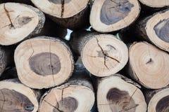 Mucho registro de madera Fotografía de archivo