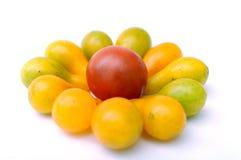 Mucho tomate de cereza Fotografía de archivo libre de regalías