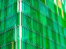 Mucho verde claro de al aire libre interior de las hojas de acrílico Fotografía de archivo