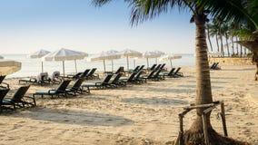 Muchos asolean camas y los paraguas blancos en la playa Fotografía de archivo