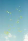 Muchos baloons brillantes que vuelan en el cielo azul Foto de archivo