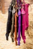Muchos bolsos para mujer coloreados Imagen de archivo