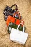 Muchos bolsos para mujer coloreados Fotografía de archivo libre de regalías