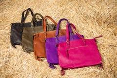 Muchos bolsos para mujer coloreados Imágenes de archivo libres de regalías