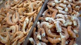 Muchos camarones frescos en el hielo Camarones congelados congelador almacen de video