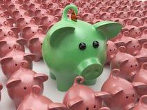 Muchos cerdos alineados en fila Fotos de archivo libres de regalías
