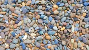 Muchos colorearon alrededor de la hierba de piedra y seca Fotos de archivo libres de regalías