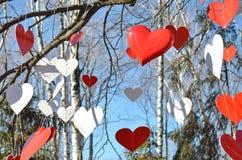Muchos corazones rojos y corazones blancos Fotografía de archivo
