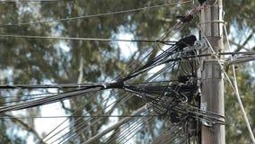 Muchos cordones de diversos servicios instalados gravemente en un polo de madera