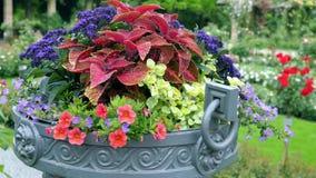 Muchos diversos colores en potes al aire libre grandes Foto de archivo