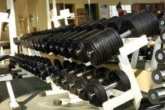 Muchos dumbells en gimnasio Fotografía de archivo