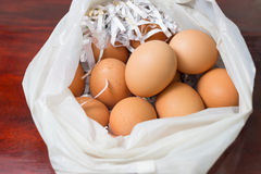 Muchos egg Fotografía de archivo libre de regalías